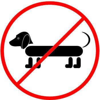 Autocollant interdit aux chiens 2