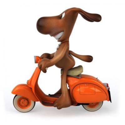 Autocollant chien en scooter