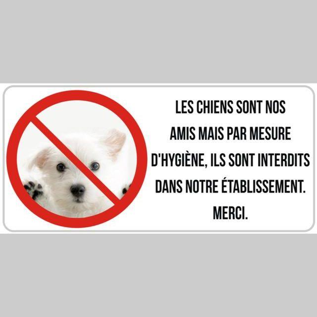 Autocollant interdit aux chiens restaurant brasserie