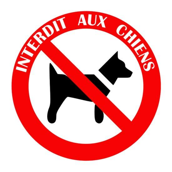 Autocollant interdit aux chiens siganlisation verticale