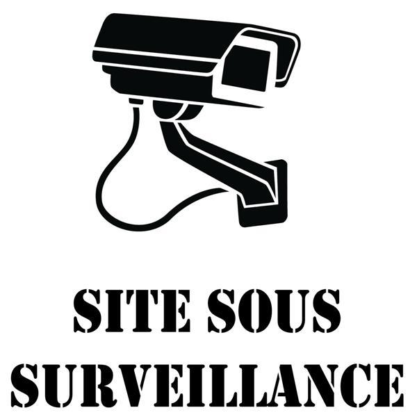 Pict6910 camera video site sous surveillance pochoir