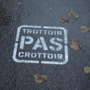Pochoir trottoir pas crottoir peint sur bitume